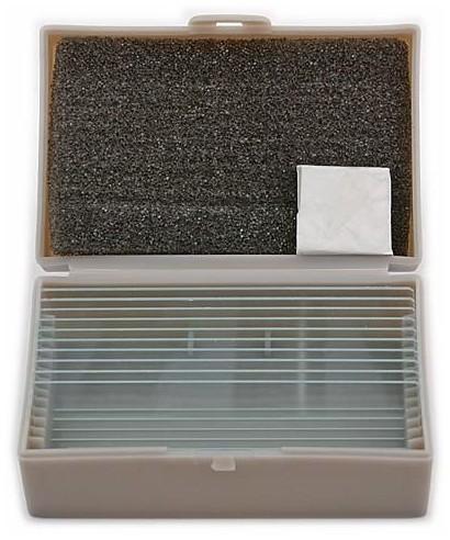 TSMOB -- Vetrini per microscopi biologici (10 pz)